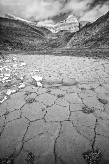 Terres craquées